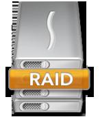 RAID Icoon