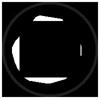 RAID Support Icon