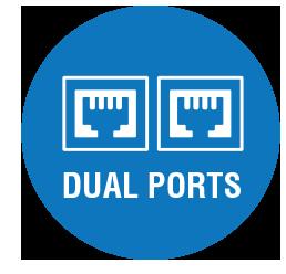 Dual Ports Icon
